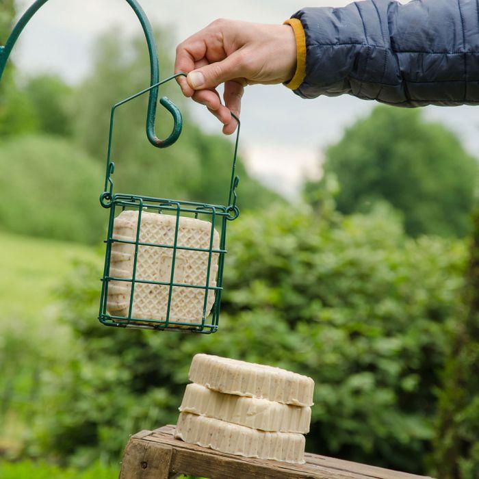 Energieblock mit Mehlwürmern