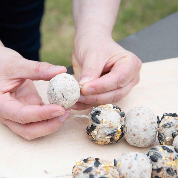 Gartenvögel-Erdnussbutter-Futtermasse 1 kg