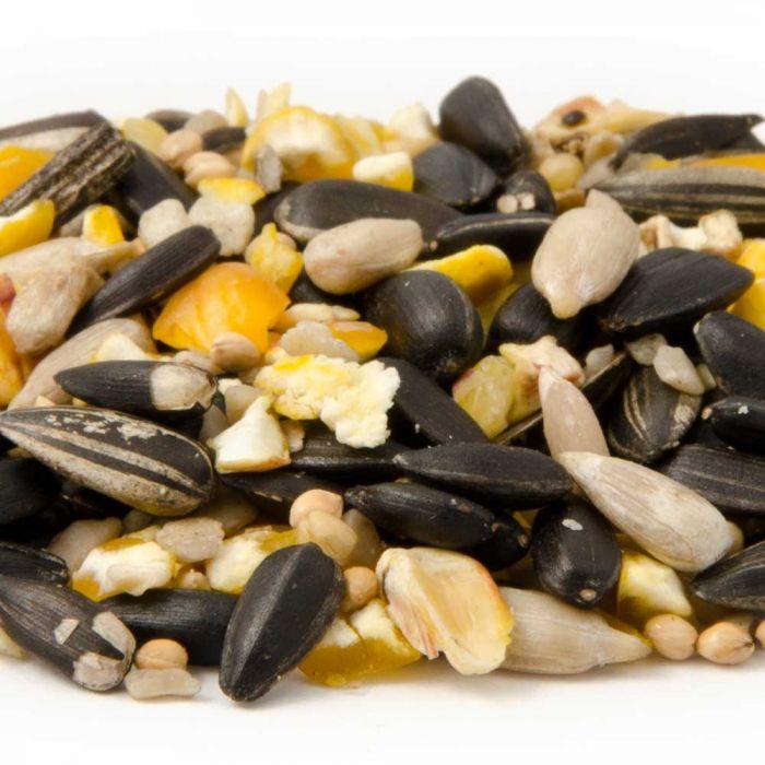 Energiereiche Samen (10kg)