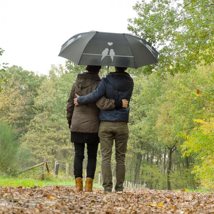Duo-Regenschirm mit Vogelsilhouette