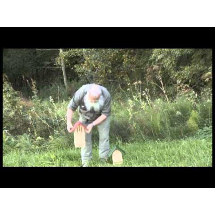 Duo-Kasten Biene und Schmetterling Grün