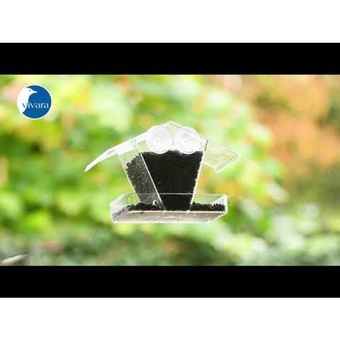 Schwarze Sonnenblumenkerne 10kg