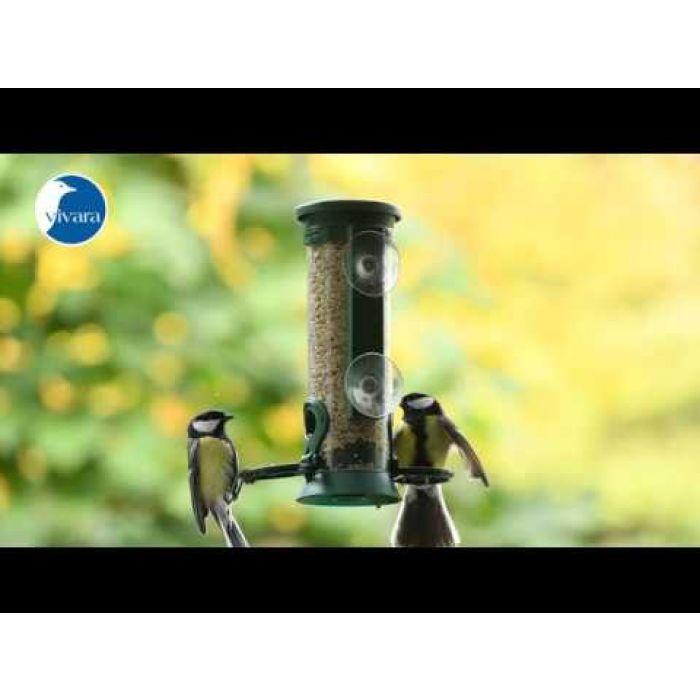 Energiereiche Samen Deluxe für Vögel