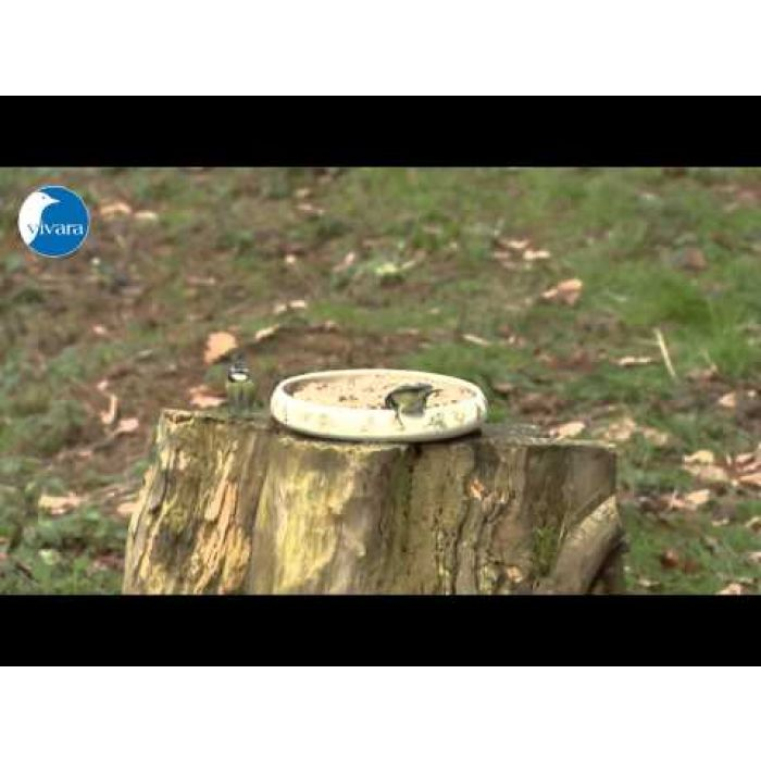 Rotkehlchen-Delikatessen 10kg