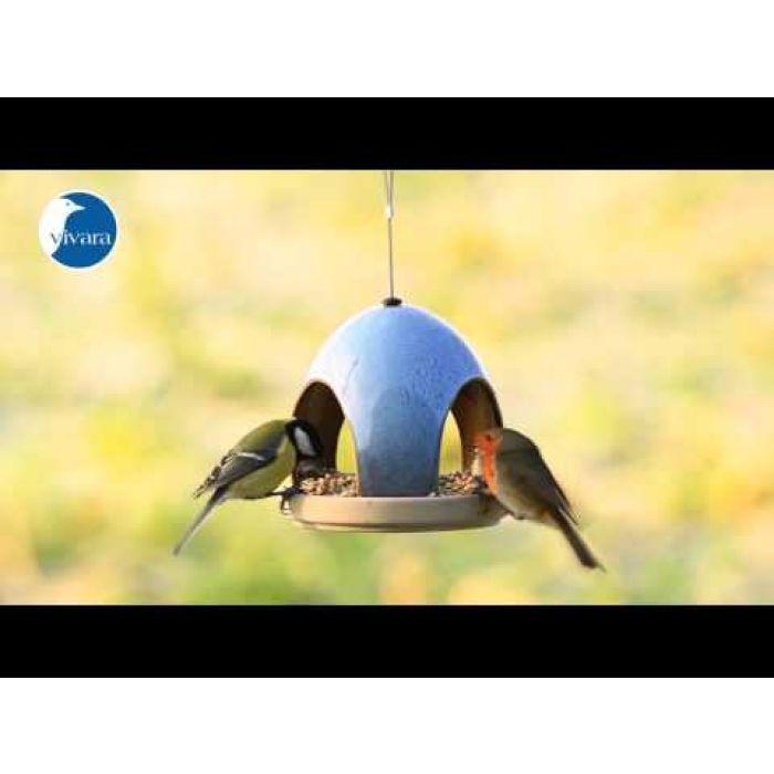 Mischung für kleine Vögel