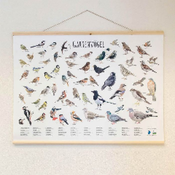 Wandkarte Gartenvögel (Elwin van der Kolk)