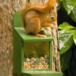 "Eichhörnchen-Futterautomat ,,Alberni"""
