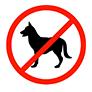 Achtung bei Haustieren