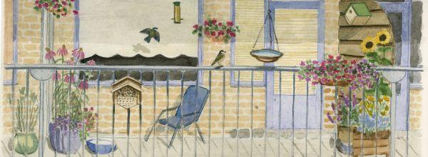 Mein Balkon als Garten für Vögel