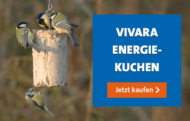 Vivara Energiekuchen