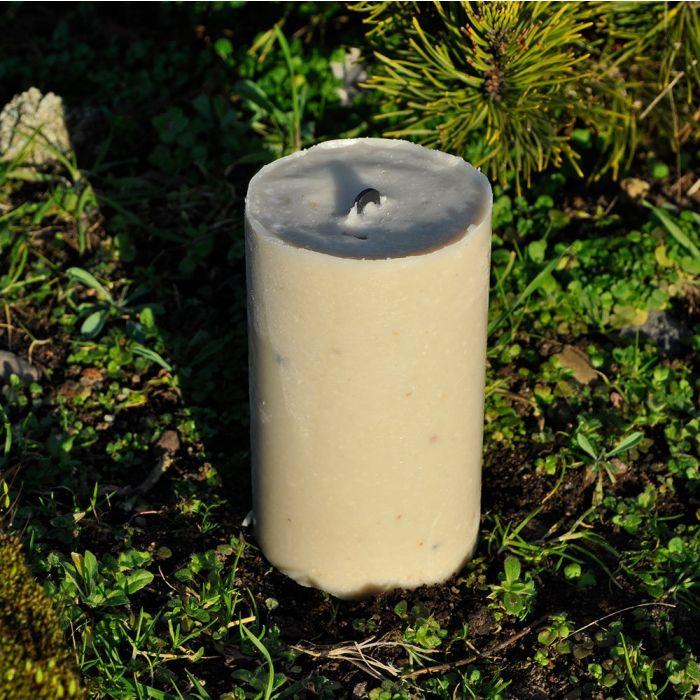 Energiekuchen-500 ml-Variationspaket (12 Stück)