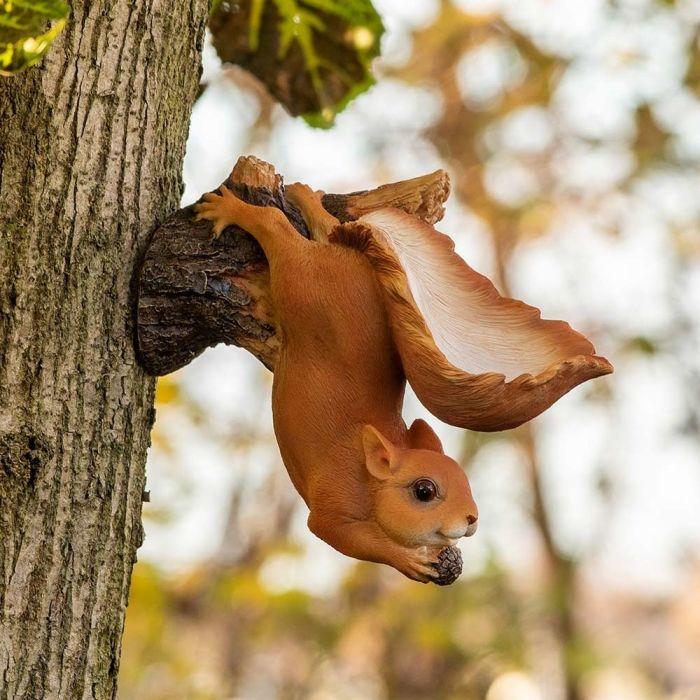 Eichhörnchen (hängend)
