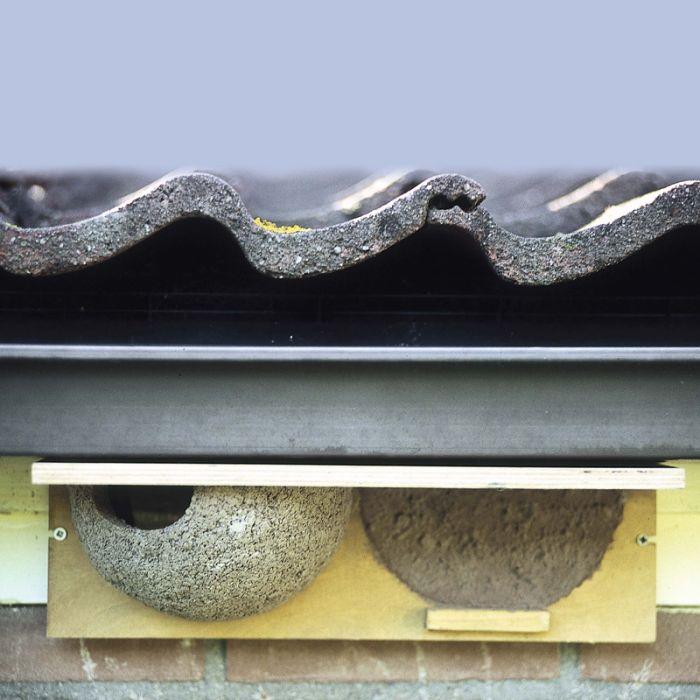 Nestvorgabe Mehlschwalbe