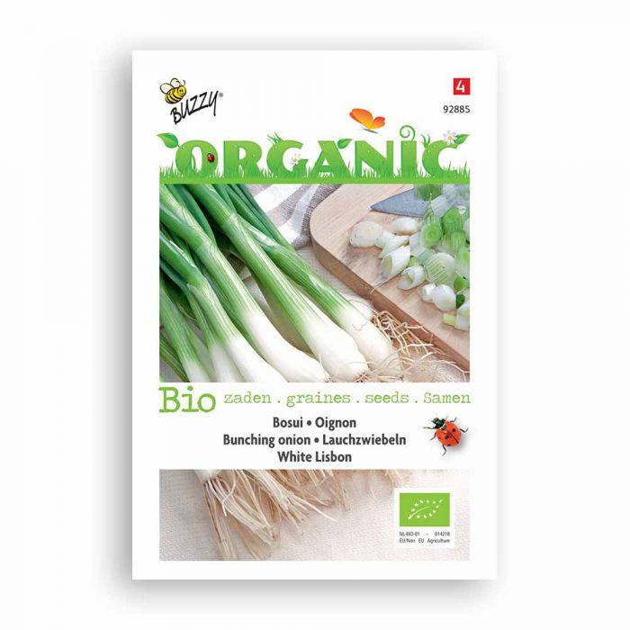 Buzzy® Organic Lauchzwiebel Wh Lisbon (BIO)