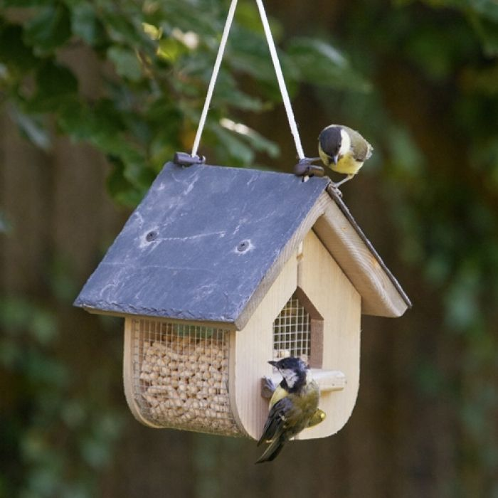 Jupiter Peanut Feeder
