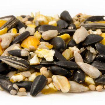 Energiereiche Samen (2.5kg)