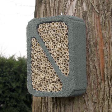 Insektenblock Grau