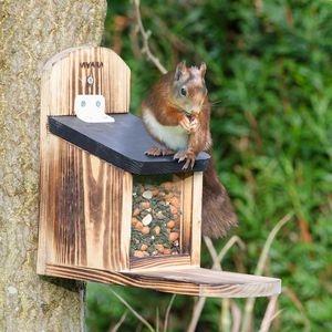Eichhörnchen-Futterautomaten
