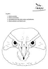 Maske Habicht