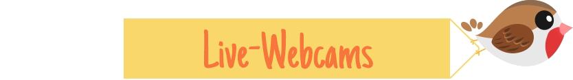 Live-Webcams
